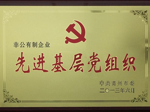 山东恒奥能源:先进基层党组织