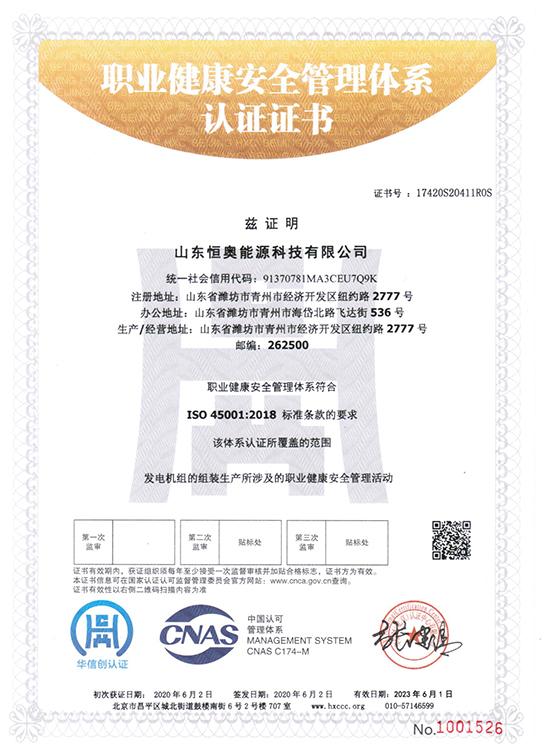 山东恒奥能源:职业健康管理体系认证证书
